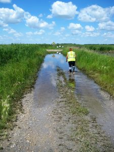 Walking north towards Kirkpatrick Swamp s